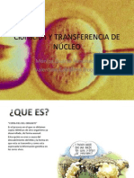 Clonación Y TRANSFERENCIA DE NÚCLEO (2)
