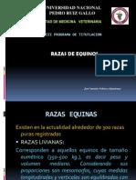 RAZAS EQUINAS