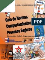 Guia Normas, Procedimientos y Procesos Seguros
