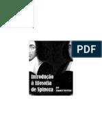 Introdução à filosofia de Spinoza - Amauri Ferreira