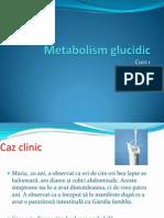 Metabolism Glucidic 1