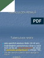 TUBERCULOZA RENALA