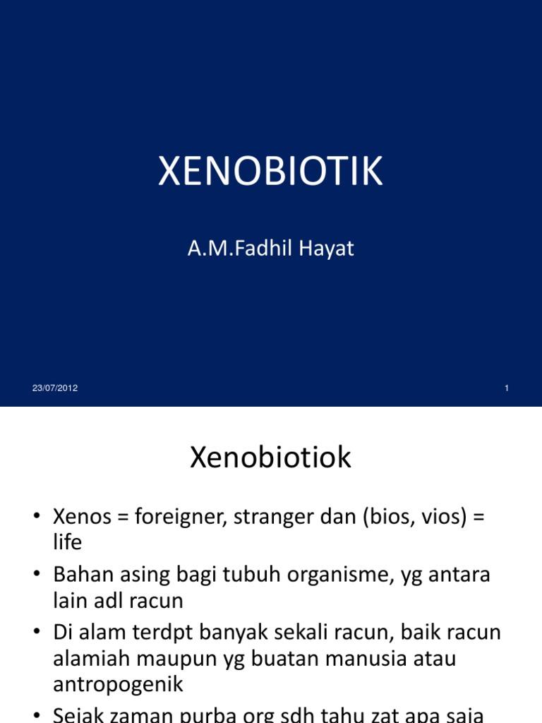 02 Xenobiotik