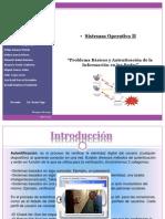 Problemas Basicos y Autentificacion de La Informacion en Las Redes