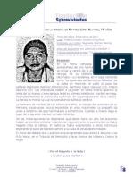 Femicidio cometido en la persona de Maribel Lopez Alvarez