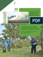 Boletim Informativo da Gestão Ambiental da BR-116/392 - Julho/2012