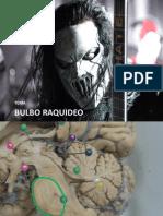 Dr. CJZB Clase VIII Bulbo Raquideo