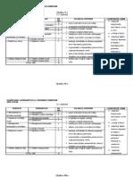 Model de Planificare Dirigentie