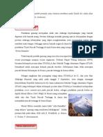Proposal Elbrus Stapala