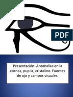Ojo y Vision Semiologia
