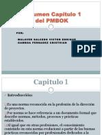 Resumen Capitulo1 PMBOK