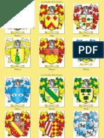 Los Escudos de los Yeperos - P