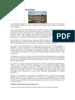La Acuicultura en el Perú