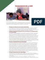 Principios Pedagogicos en La Ebr