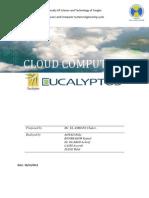 Rapport Eucalyptus CloudComputing