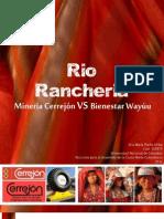 Mineria cerrejon y condición wayuu social/etnica