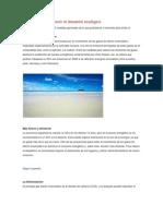 Medidas para prevenir el desastre ecológico