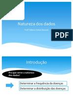 Natureza Dos Dados