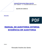 Auditoria Interna Evidencias