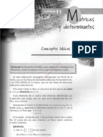 001cap 11 Matrices y Determinantes