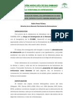 1 La Comunicacion Verbal Del Entrenador de Base en Andalucia