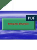 4.1 Enterprise Structure