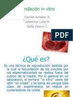 Fecundación in-vitro