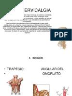 Cervical Gia