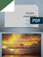 Gestión empresarial -MYPES (microempresas), mercado, plan de negocios...