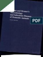 syphilis slides ppt public health medical statistics
