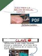 10 Claves Inseminacion