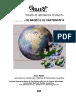 Conceptos basicos de cartografia.pdf