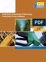 UNDP, Preliminary Assessment of Bioenergy Production in the Caribbean, 12-2009