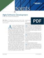 Viewpoint Agile Software Development