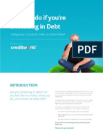 A Beginners Guide to Debt and Debt Relief