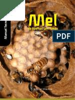 Mel das abelhas sem ferrão_Manual