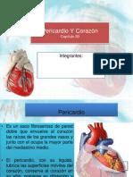 Pericardio Y Corazón cap 30
