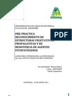 RECONOCIMIENTO DE ESTRUCTURAS  VEGETATIVAS, PROPAGATIVAS Y DE RESISTENCIA DE AGENTES FITOPATOGENOS