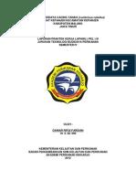 Laporan PKL III (Cacing Lumbricus)