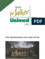 Apresentação Deficiente Visual AMUL - 2012