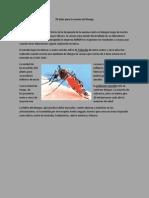 70 años para la vacuna del Denge