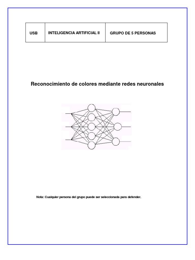 Circuito Neuronal : Circuito neuronal