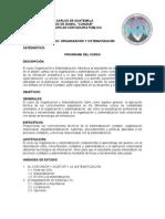 PROGRAMA DEL CURSO ORGANIZACI+ôN Y SISTEMATIZACI+ôN