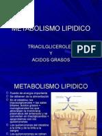 metabolismo-lipidico