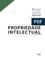 MUITO BOM Propriedade_Intelectual