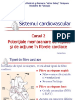 Cardiovascular 2