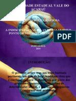 Trabalho de conclusão de curso de Psicopedagogia