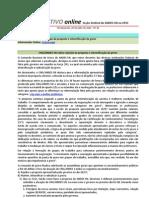 Informativo Online n° 24