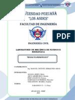 Informe de Lab Fluiods Resalto Hidraulico