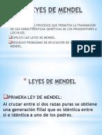 Taller #4 Leyes de Mendel